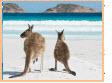 Australia VR tours